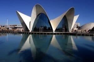 Programm für Gruppen Valencia, Spanien 2