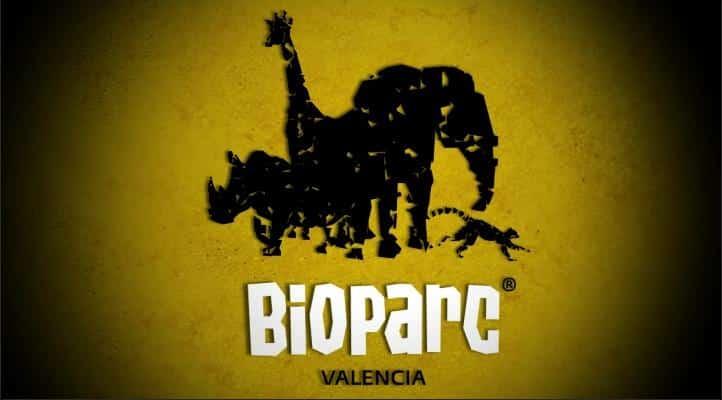 Sommercamp in Spanien Valencia für Jugendliche 14