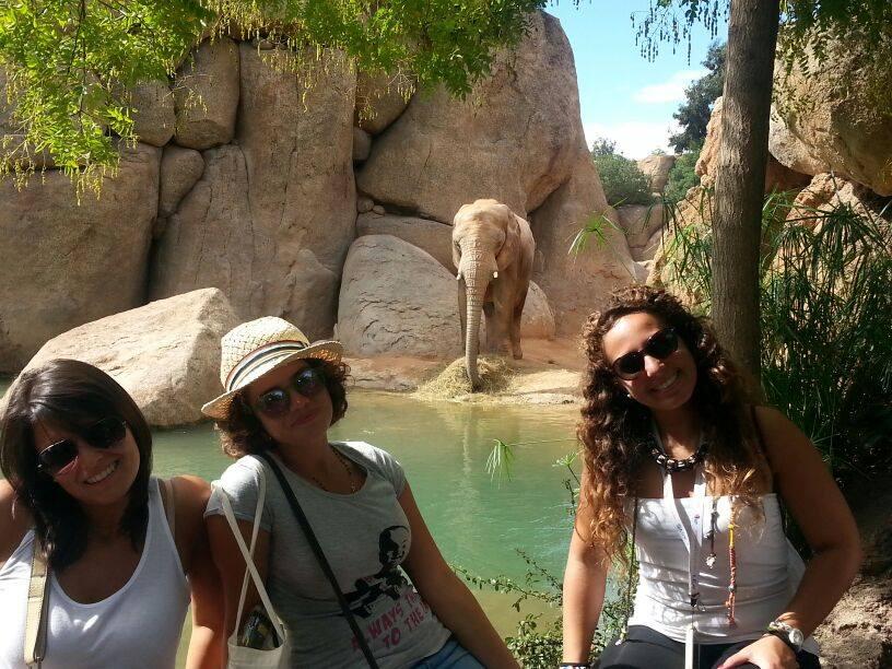 Drei Frauen in einem Zoo in Valencia, Aktivitaeten von unserer Schule